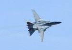 F-14s at Republic